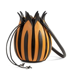 Backpack Tulip 'Rembrant'