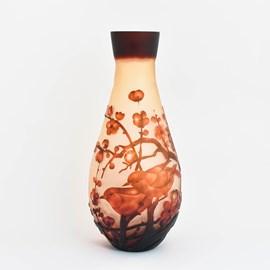 Vase Morning Sakura