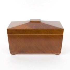 Tea Box/Tea Caddy Exotique